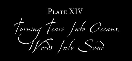 Plate XIV: TURNING TEARS INTO OCEANS, WORDS INTO SAND